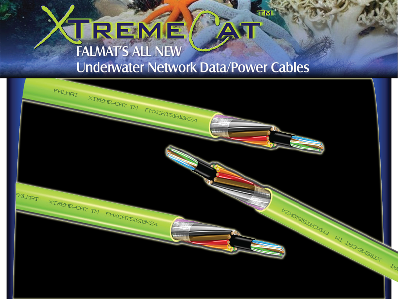 Xtreme Cat
